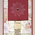 """Chrysanthemum Star Card"" by pennydreadful3"