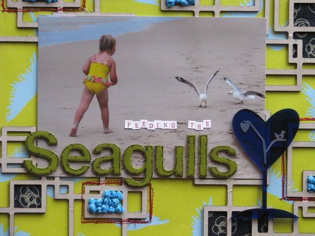Feeding the seagulls upclose#1