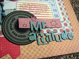 Mrattitude-closeup